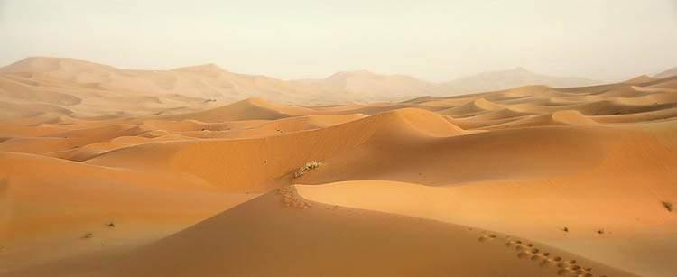 Henryk Sienkiewicz W pustyni i w puszczy ciekawostki