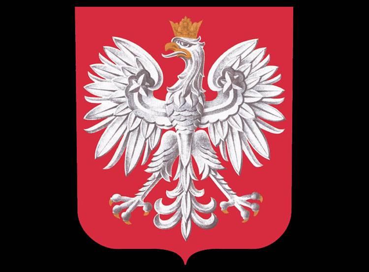 orzeł godło Rzeczpospolita Polska ciekawostki polskie o Polsce Polacy