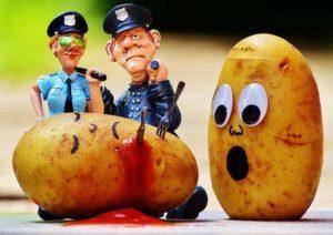 policja policjanci