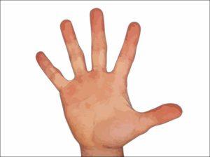 ręka dłoń