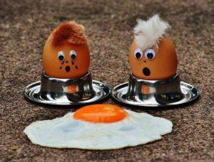 jajko jajka dowcipy o jajkach jajach