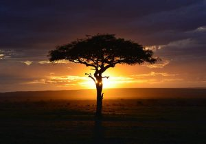 Kenia wakacje w Kenii