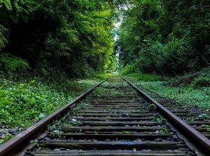 odstraszacze akustyczne pociągi kolej wypadki zwierzęta