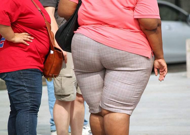 odchudzanie dieta ciekawostki otyłość ortoreksja rwa kulszowa choroby