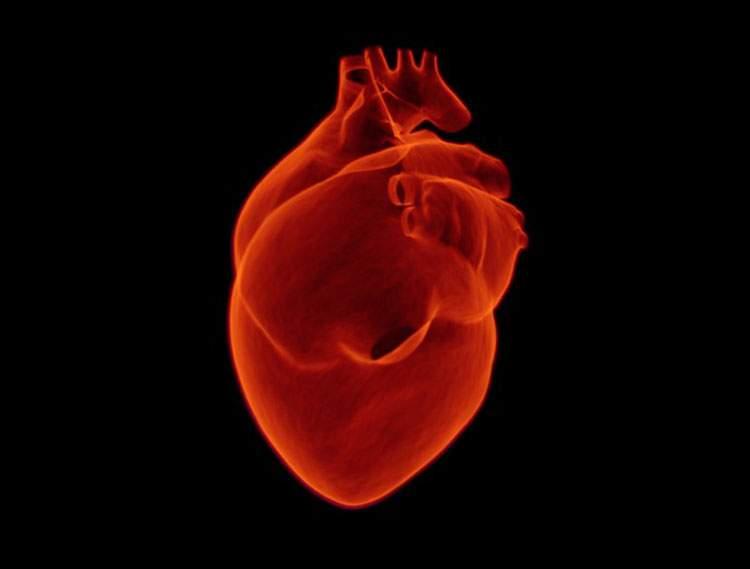 zawał serca żylaki żółtaczka choroby