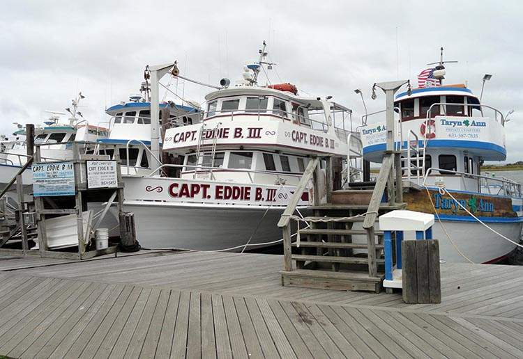 Longi Island ciekawostki Nowy Jork Robert Moses National Park NY marina