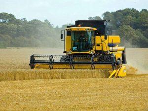 kombajn żniwa rolnictwo plony zbiory