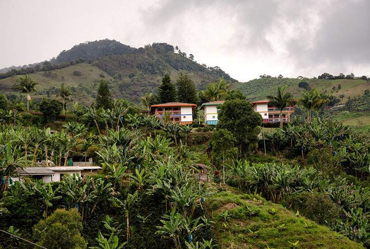 Kolumbia ciekawostki o Kolumbii Jardin