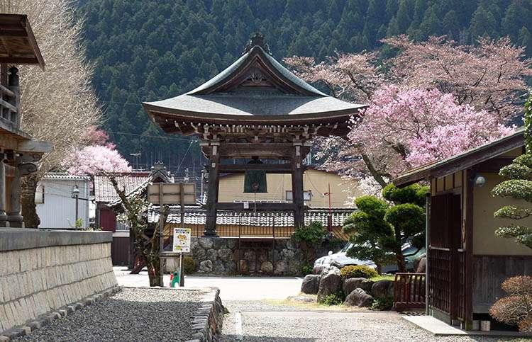 kraj kwitnącej wiśni Japonia Gujo