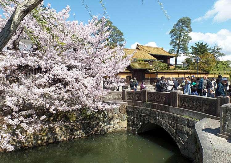 kraj kwitnącej wiśni Japonia Kurashiki