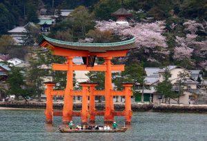 kraj kwitnącej wiśni Japonia Miyajima