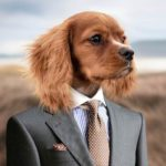 krawaty krawaty dowcipy o krawatach moda męska humor