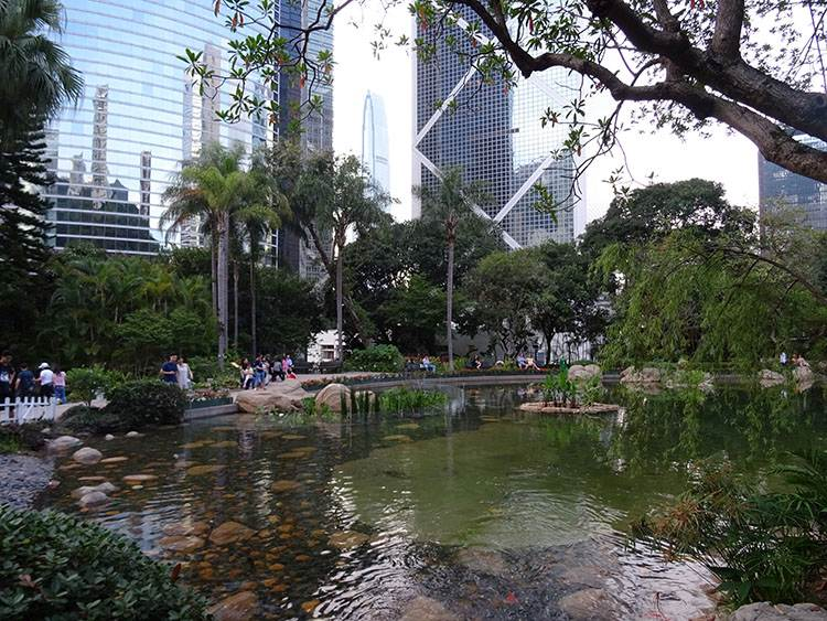 Hong Kong Park ślub za granicą w Hongkongu