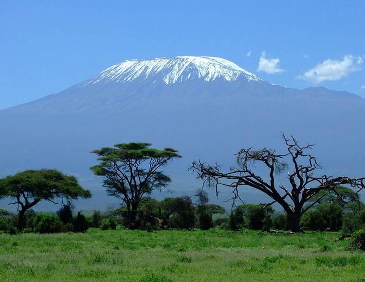 Kilimandżaro Park Narodowy Kenia Afryka atrakcje zwierzęta parki narodowe