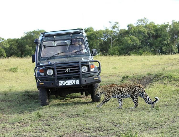 Masai Mara Park Narodowy Kenia Afryka atrakcje zwierzęta parki narodowe