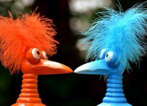 ptak dowcipy o ptakach humor ptaki kawały