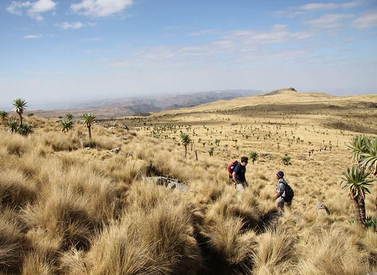 Simien Etiopia ciekawostki o Etiopii atrakcje przyroda