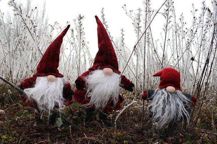 krasnal krasnale krasnoludek krasnoludki ciekawostki elfy skrzaty