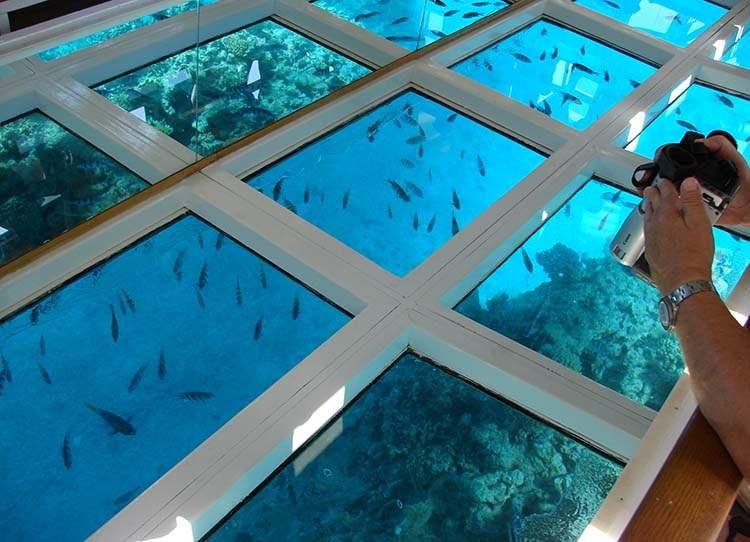 Szarm el Szejk ciekawostki-Sharm el Sheikh Egipt atrakcje rafy koralowe rejs