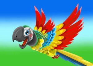 papuga dowcipy papugi kawały humor