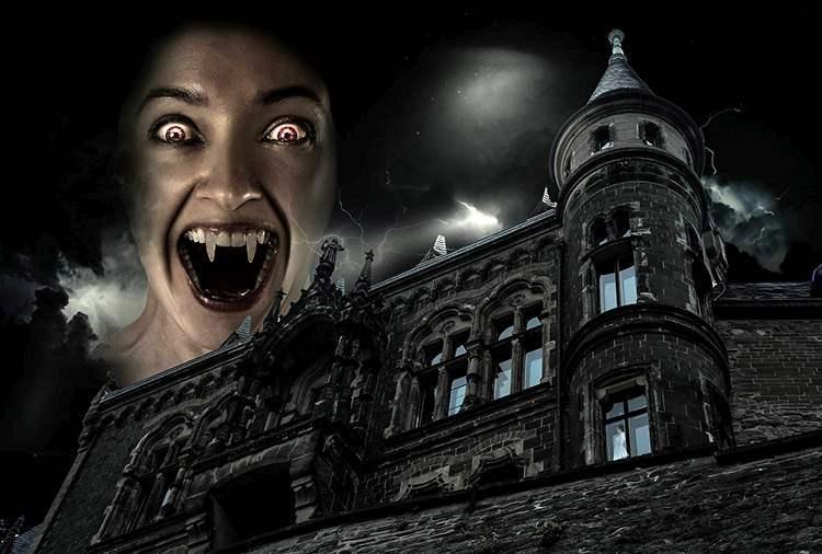 czosnek wampir wampiry ciekawostki o wampirach