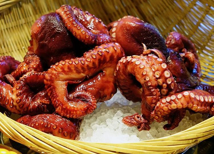 ośmiornica ośmiornice owoce morza ciekawostki