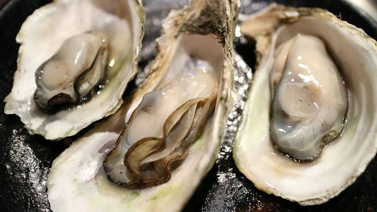 ostrygi owoce morza ciekawostki