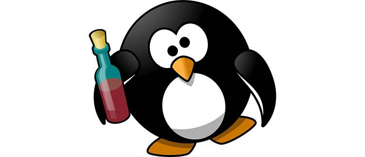 pingwin dowcipy pingwinach kawały pingwiny humor