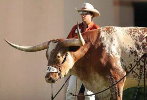 stan Teksas ciekawostki USA informacje rodeo