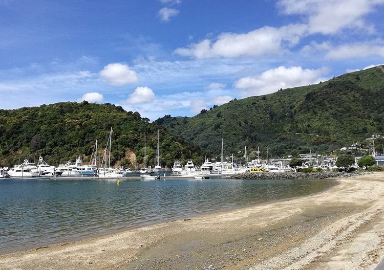 Picton Nowa Zelandia ciekawostki atrakcje