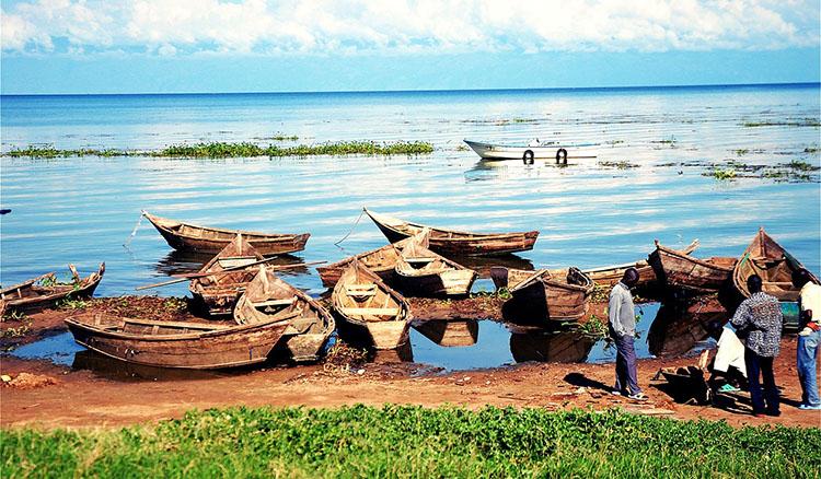 Jezioro Wiktorii Uganda ciekawostki atrakcje Afryka