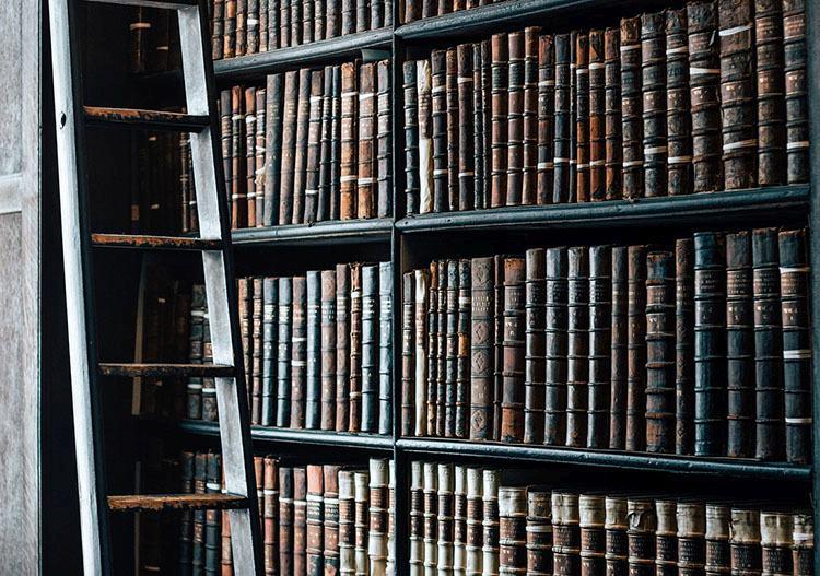 biblioteka zbiór książek książka ciekawostki o książkach książki