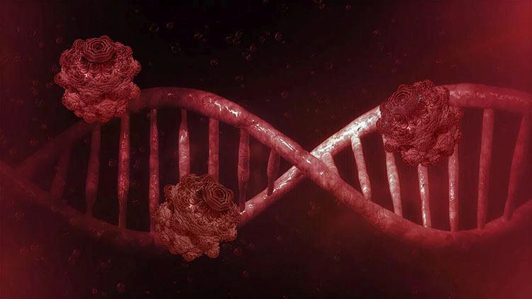 pierwszy koronawirus w Polsce ciekawostki Polska Wuhan epidemia