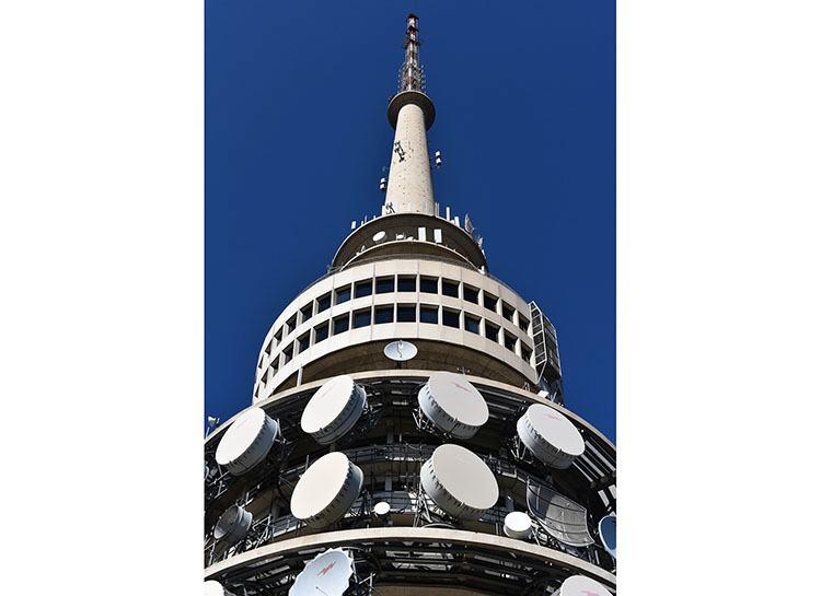 Telsla Tower Canberra stolica Australia ciekawostki atrakcje