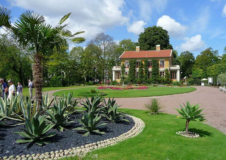 ogród botaniczny Goteborg ciekawostki miasto atrakcje Szwecja