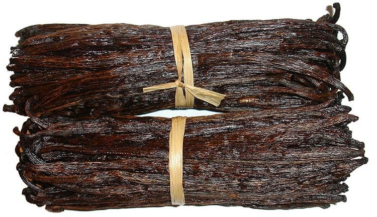 laski wanilia roÅ›lina przyprawa ciekawostki o wanilii