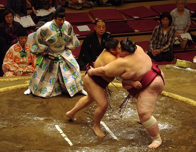 sumo ciekawostki sport zasady walka Japonia