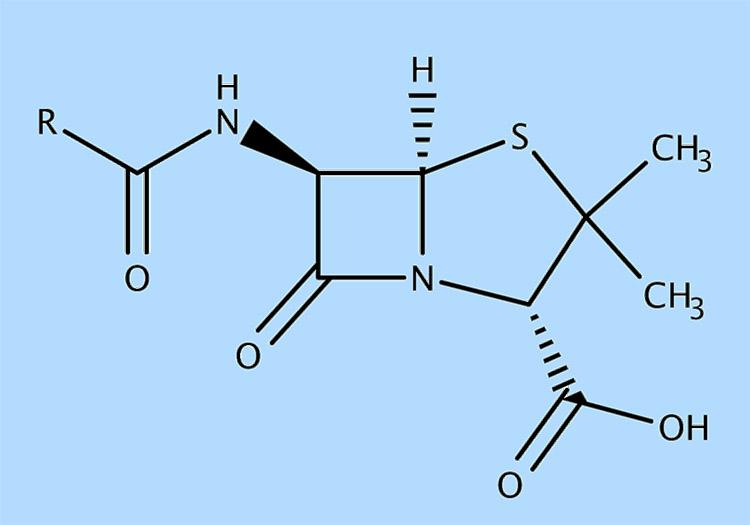 penicylina ciekawostki o penicylinie penicyliny