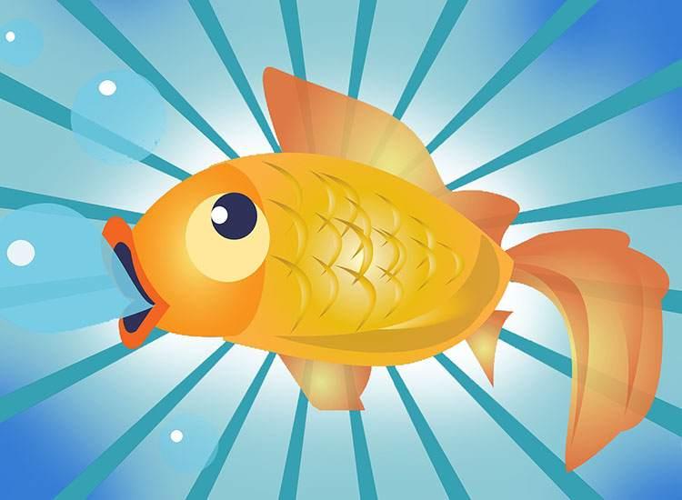 złota rybka dowcipy złoto humor kawały