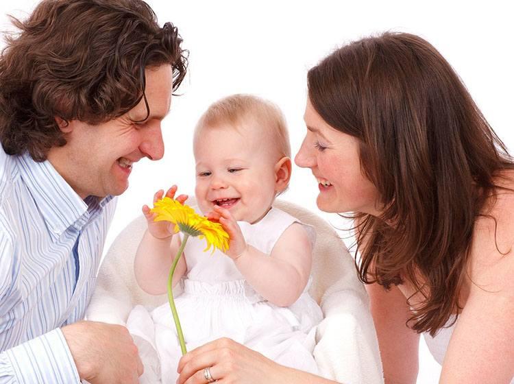 dziecko wychowanie dziecka estetyka poczucie piękna