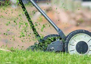 kosiarka mały ogród trawa koszenie trawy