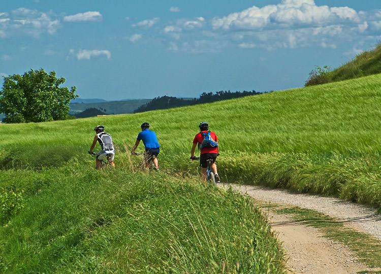 trasy rowerowe turystyka rowerowa ciekawostki rowery Green Velo