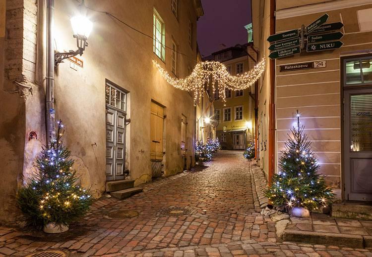 Tallinn Łotwa  ciekawostki choinka Bożego Narodzenie  Wigilia