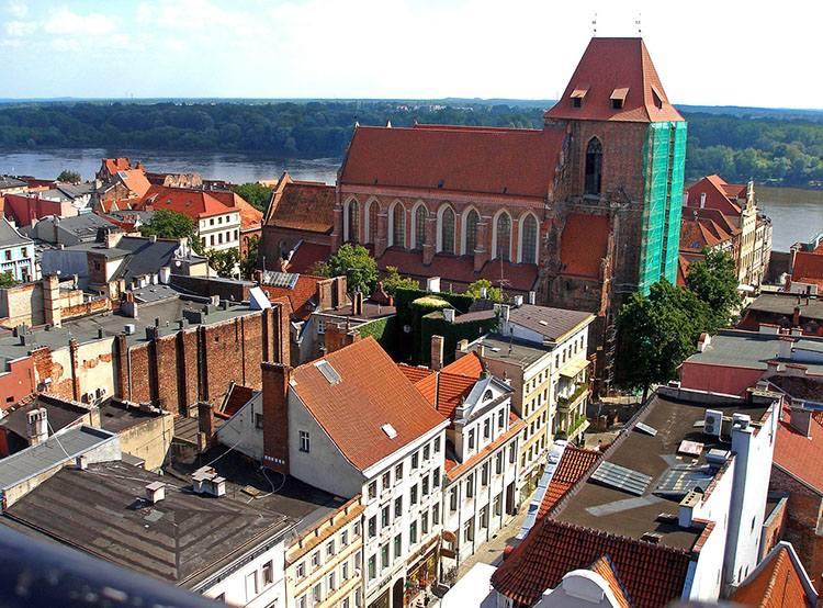 katedra Toruń ciekawostki atrakcje zabytki