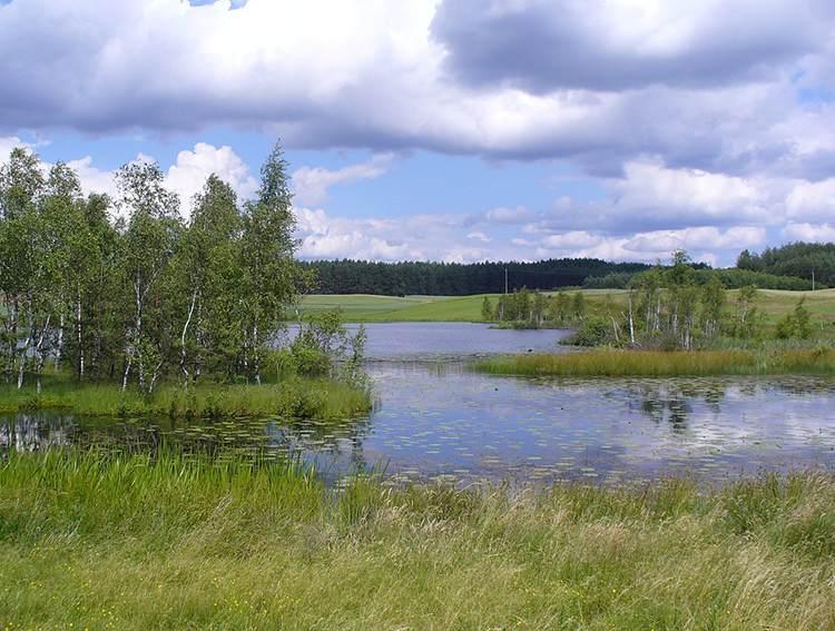 Kaszuby ciekawostki informacje jezioro zieleń drzewa wakacje chmury