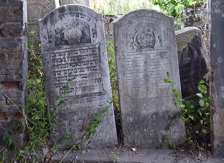 macewy kirkut cmentarz żydowski Lubaczów ciekawostki