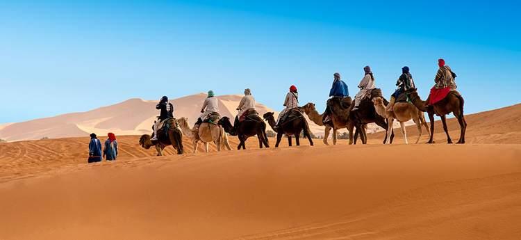 marokańska pustynia karawana wielbłądy