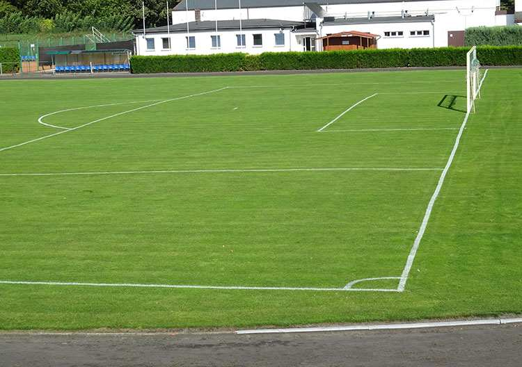 boisko piłkarskie w Opalenicy