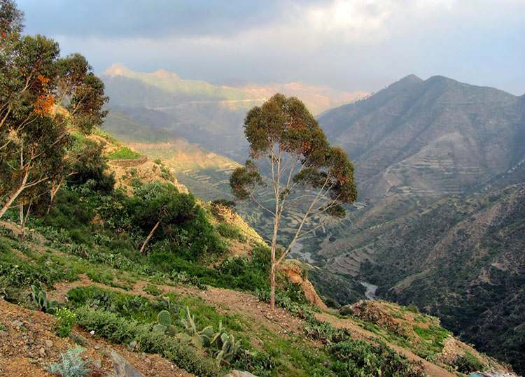 góry Erytrea ciekawostki Afryka