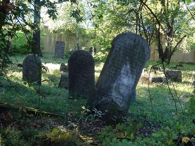 kirkut cmentarz żydowski w Grodzisku Mazowieckim